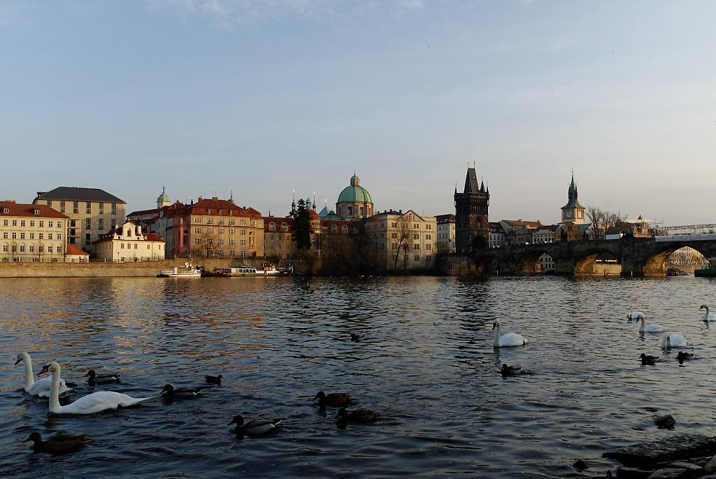 Praga (75)_1024